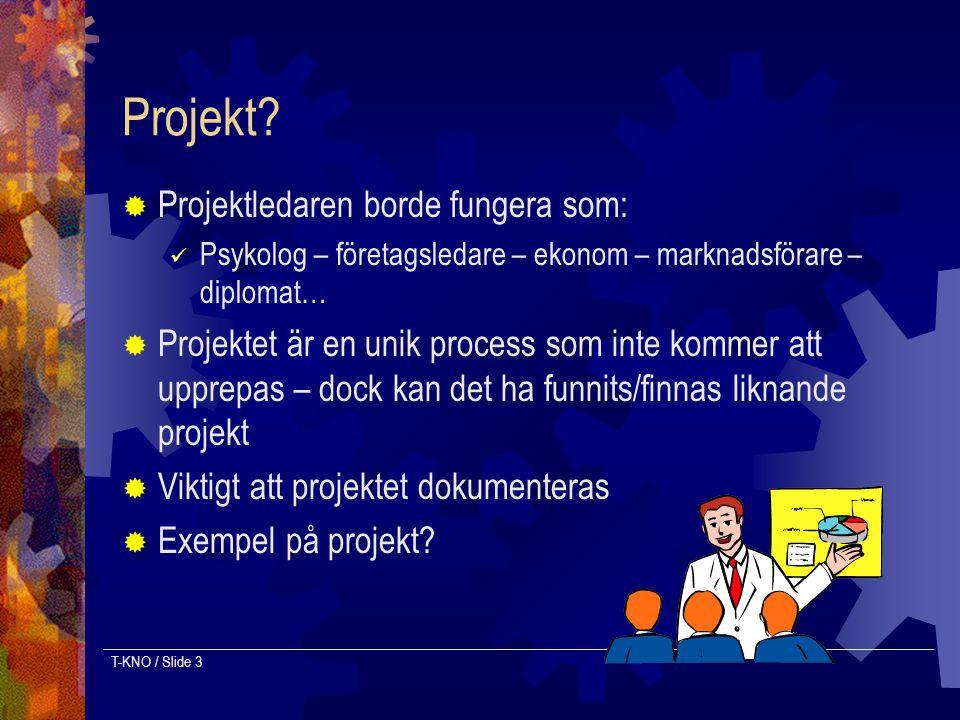 Projekt Projektledaren borde fungera som: