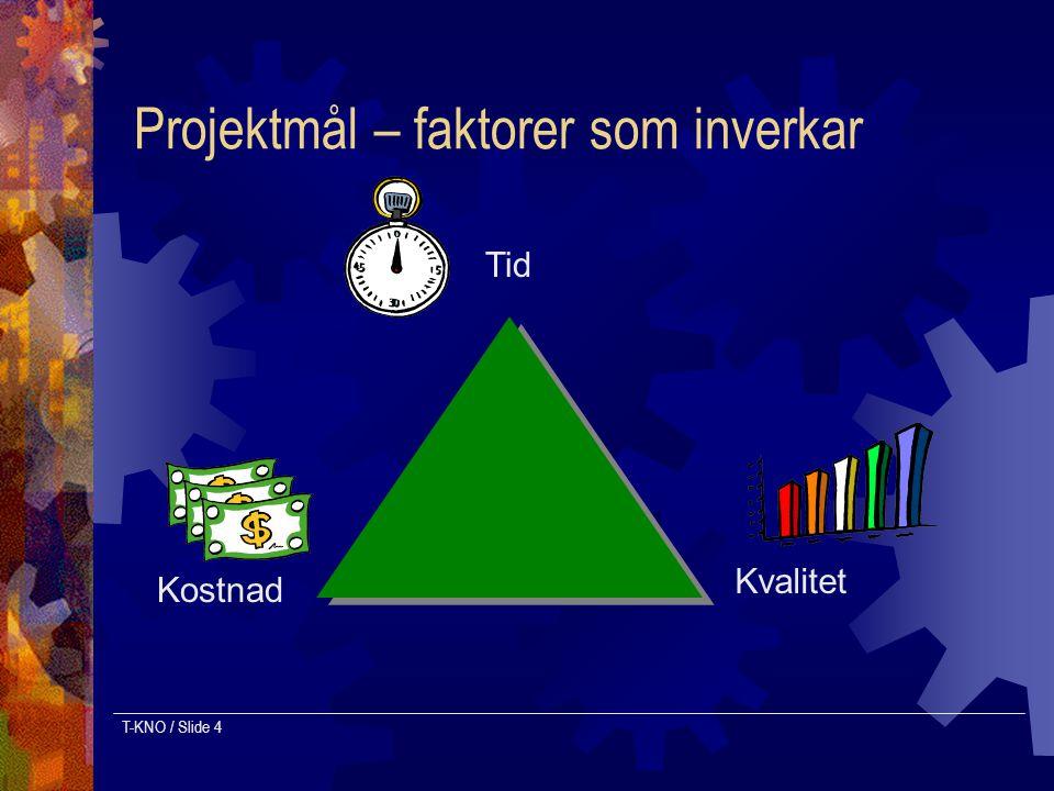 Projektmål – faktorer som inverkar