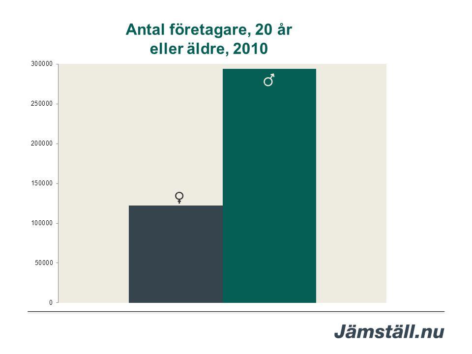 Antal företagare, 20 år eller äldre, 2010