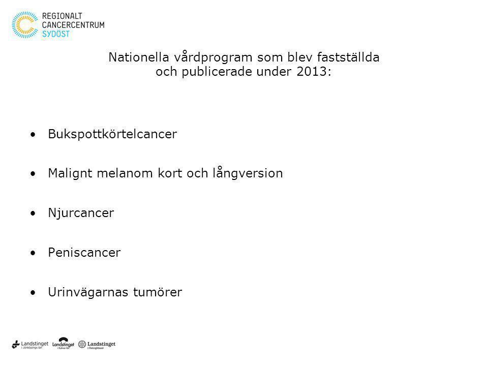 Nationella vårdprogram som blev fastställda och publicerade under 2013: