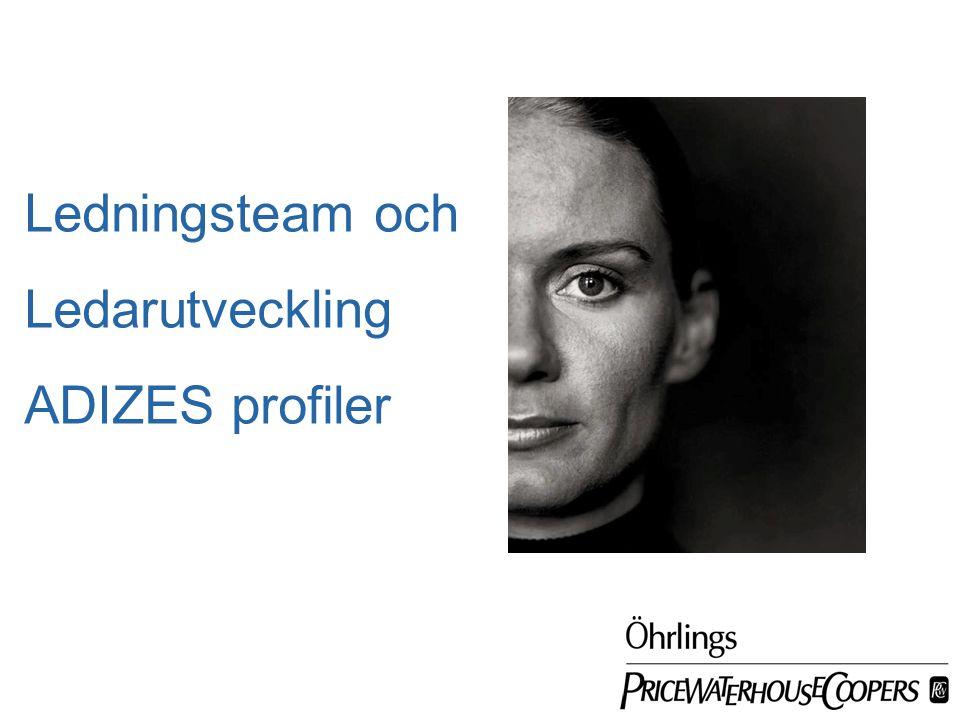 Date Ledningsteam och Ledarutveckling ADIZES profiler