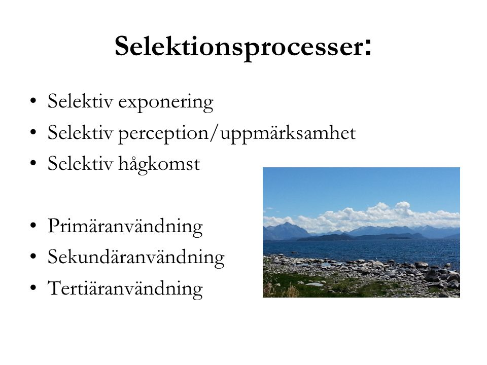 Selektionsprocesser: