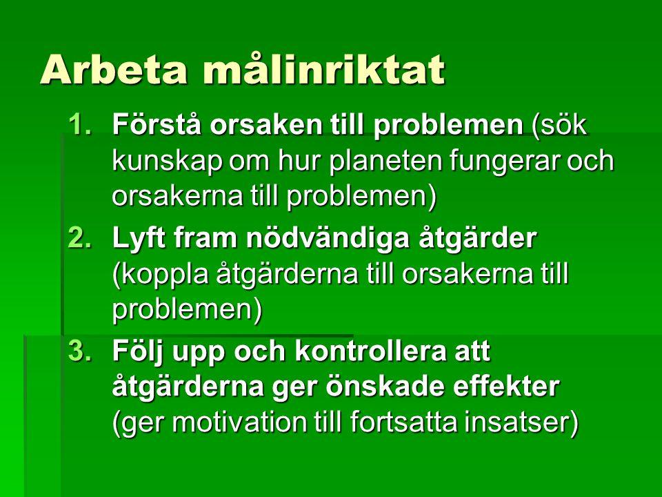 Arbeta målinriktat Förstå orsaken till problemen (sök kunskap om hur planeten fungerar och orsakerna till problemen)