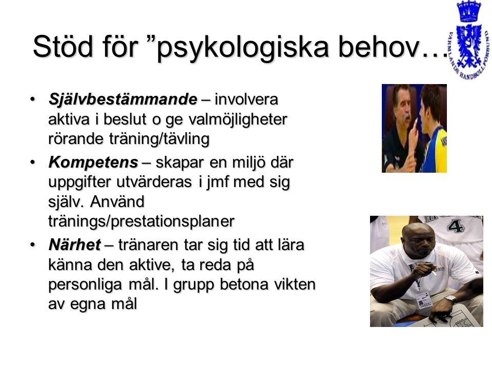 Stöd för psykologiska behov…
