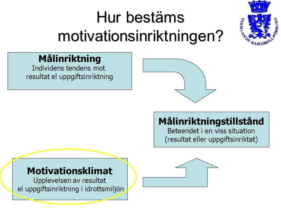Hur bestäms motivationsinriktningen