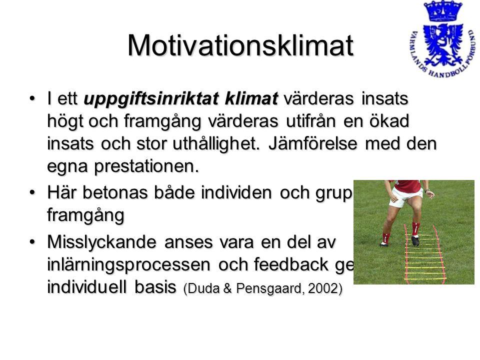 Motivationsklimat