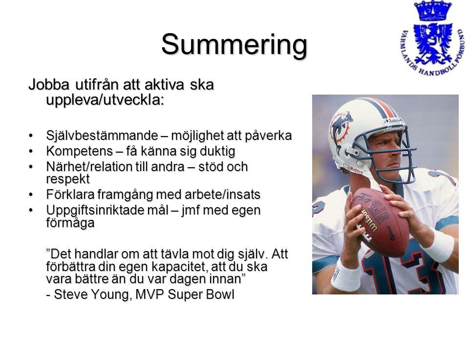 Summering Jobba utifrån att aktiva ska uppleva/utveckla: