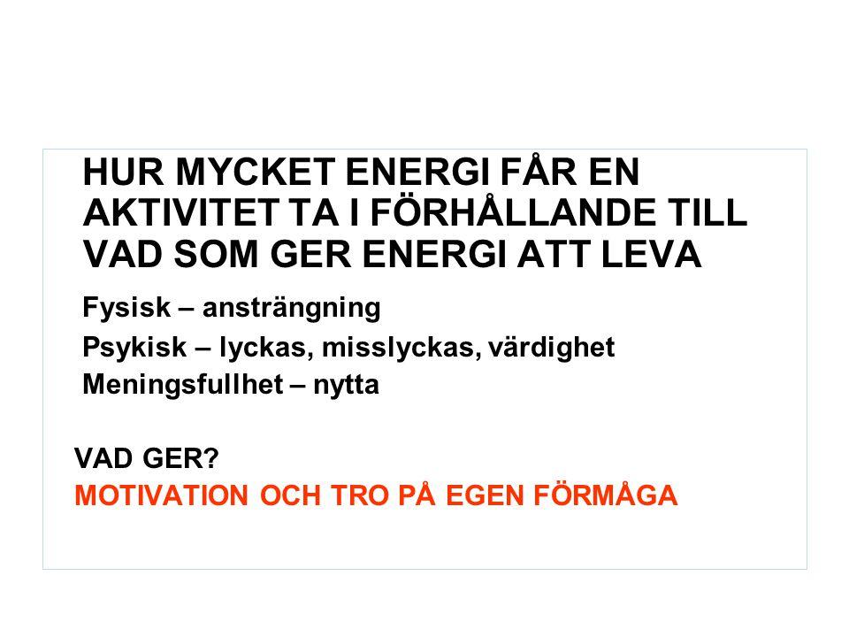 HUR MYCKET ENERGI FÅR EN AKTIVITET TA I FÖRHÅLLANDE TILL VAD SOM GER ENERGI ATT LEVA