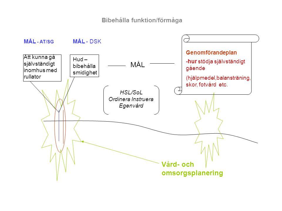 HSL/SoL Ordinera Instruera Egenvård