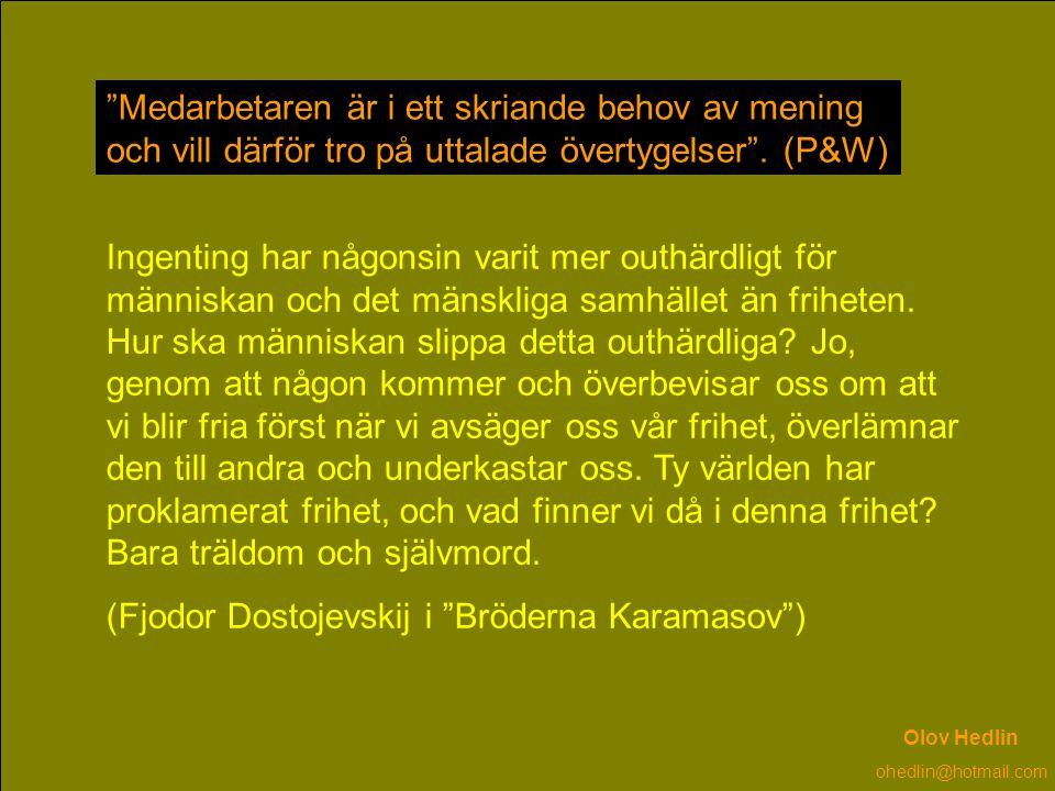 (Fjodor Dostojevskij i Bröderna Karamasov )