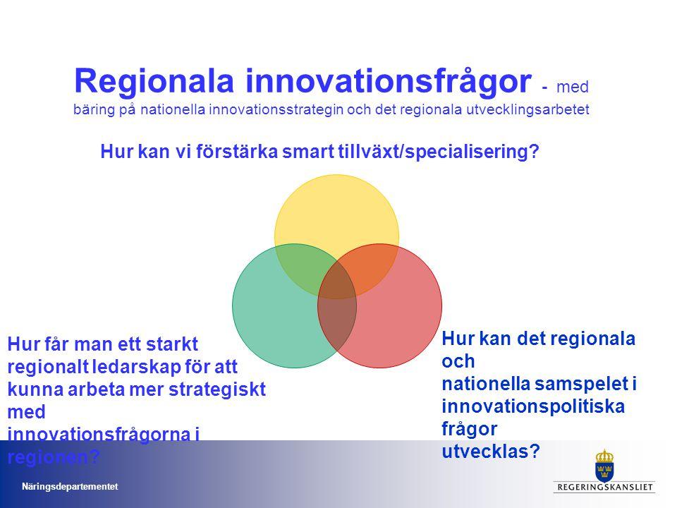 Regionala innovationsfrågor - med bäring på nationella innovationsstrategin och det regionala utvecklingsarbetet