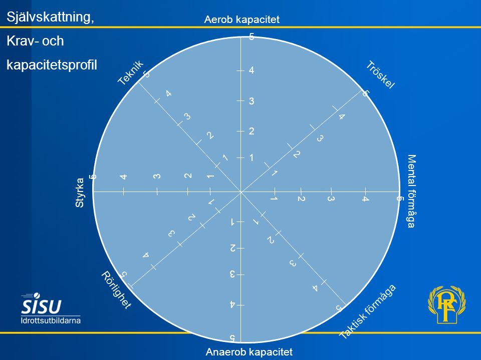 Självskattning, Krav- och kapacitetsprofil Aerob kapacitet Teknik