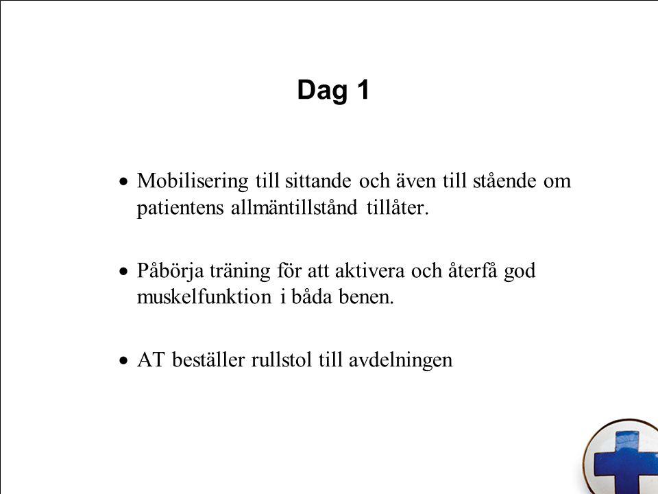 Dag 1 Mobilisering till sittande och även till stående om patientens allmäntillstånd tillåter.