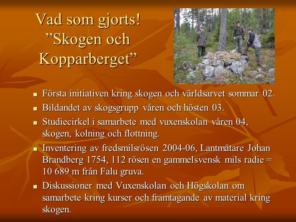Vad som gjorts! Skogen och Kopparberget