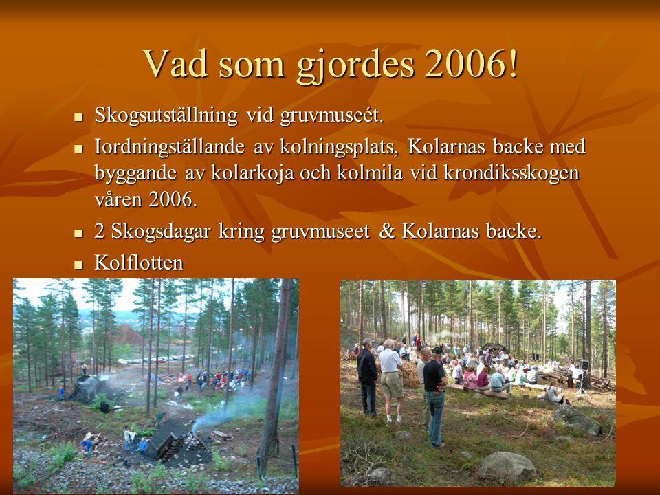 Vad som gjordes 2006! Skogsutställning vid gruvmuseét.