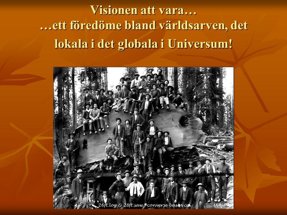 Visionen att vara… …ett föredöme bland världsarven, det lokala i det globala i Universum!
