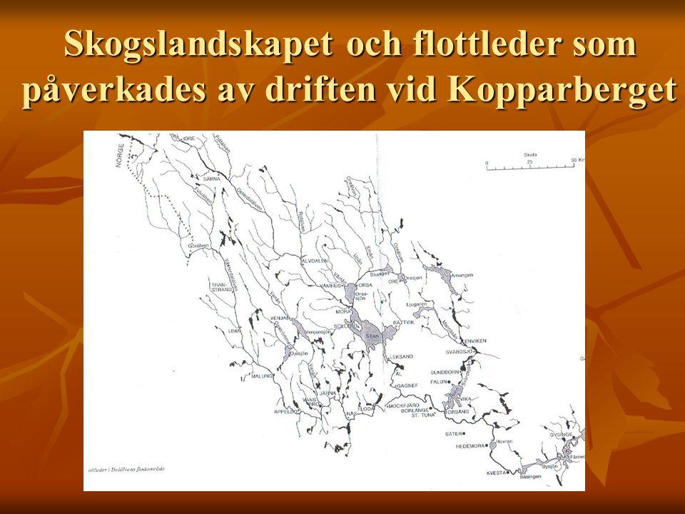Skogslandskapet och flottleder som påverkades av driften vid Kopparberget