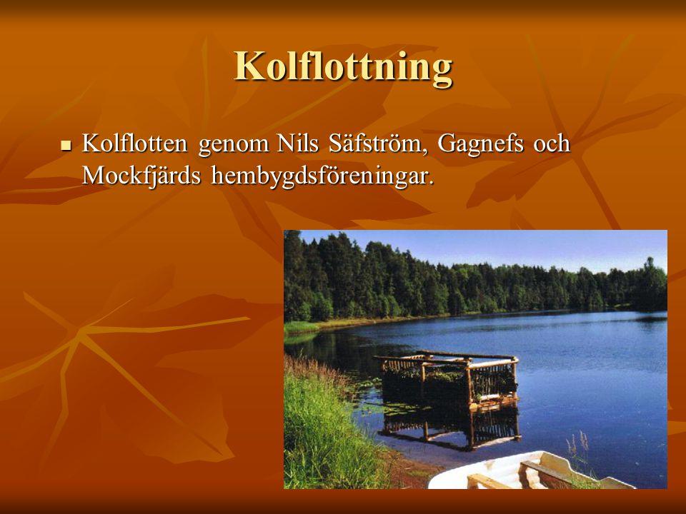 Kolflottning Kolflotten genom Nils Säfström, Gagnefs och Mockfjärds hembygdsföreningar.