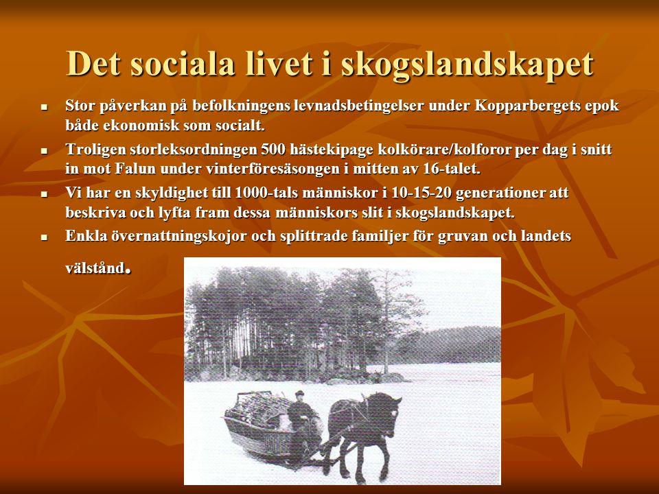 Det sociala livet i skogslandskapet