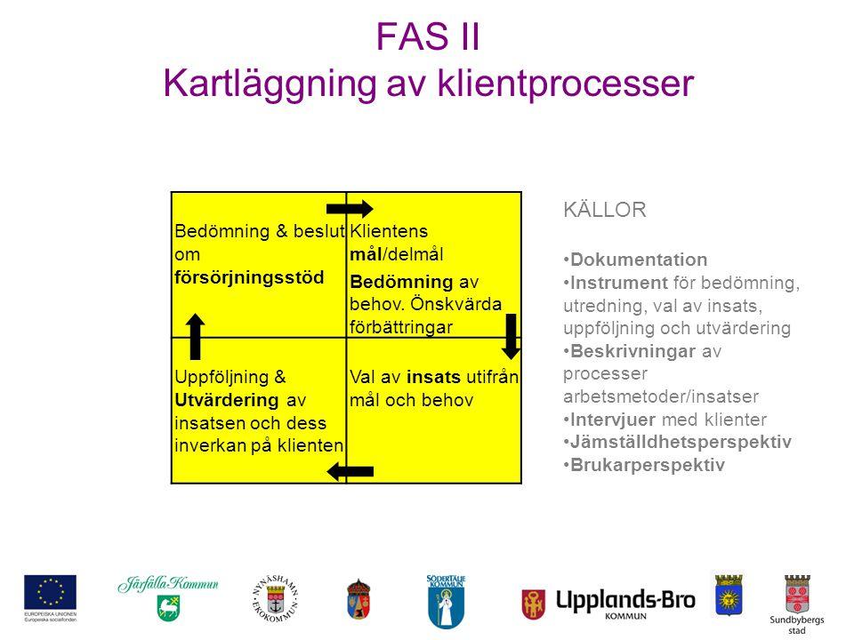 FAS II Kartläggning av klientprocesser