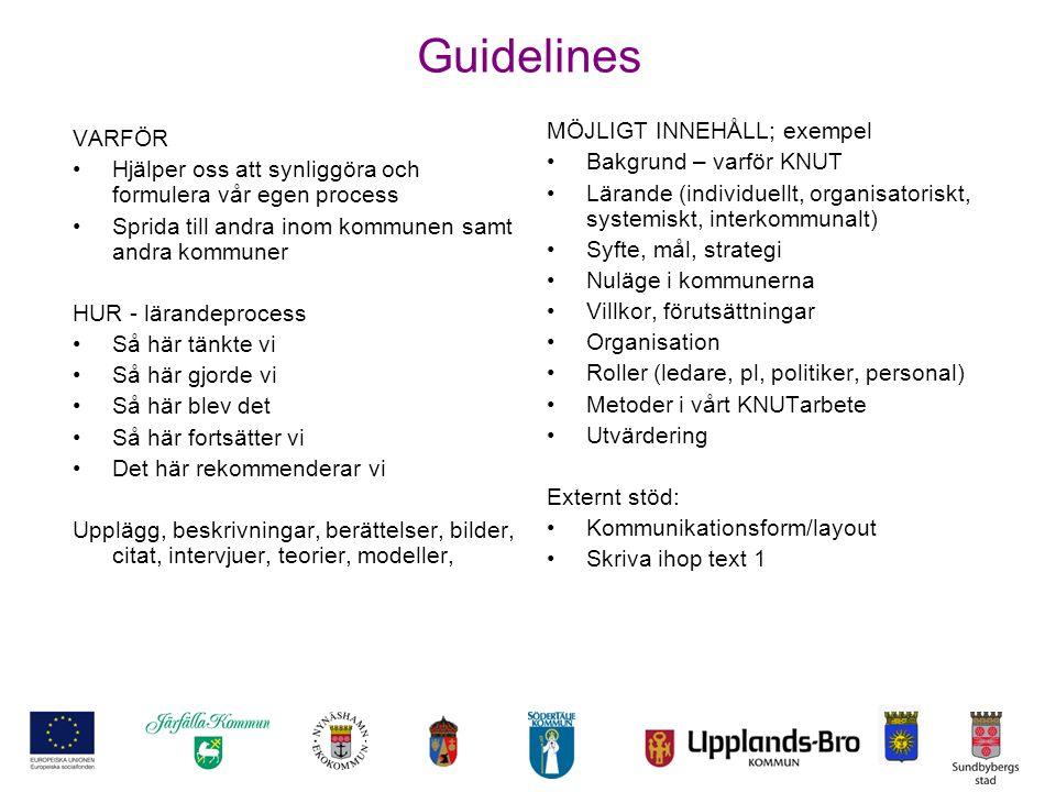 Guidelines MÖJLIGT INNEHÅLL; exempel VARFÖR Bakgrund – varför KNUT