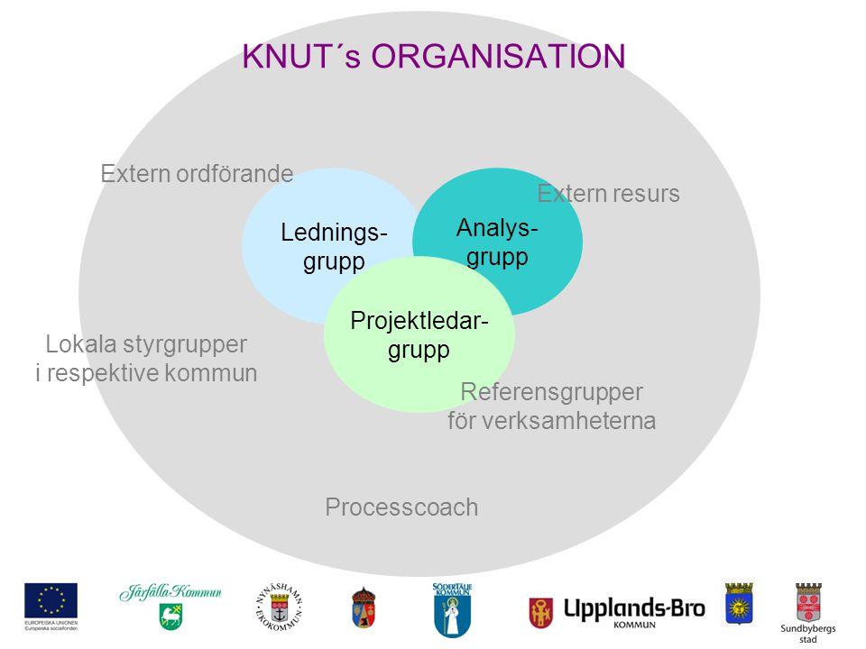 KNUT´s ORGANISATION Extern ordförande Extern resurs Lednings- Analys-