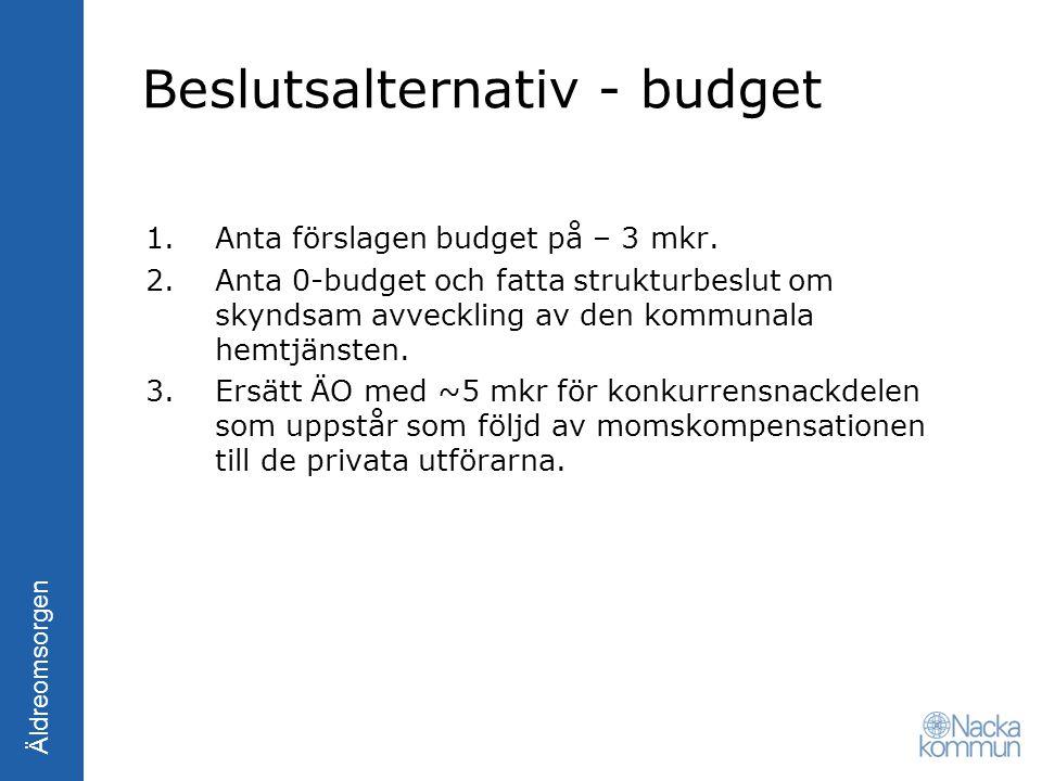Beslutsalternativ - budget