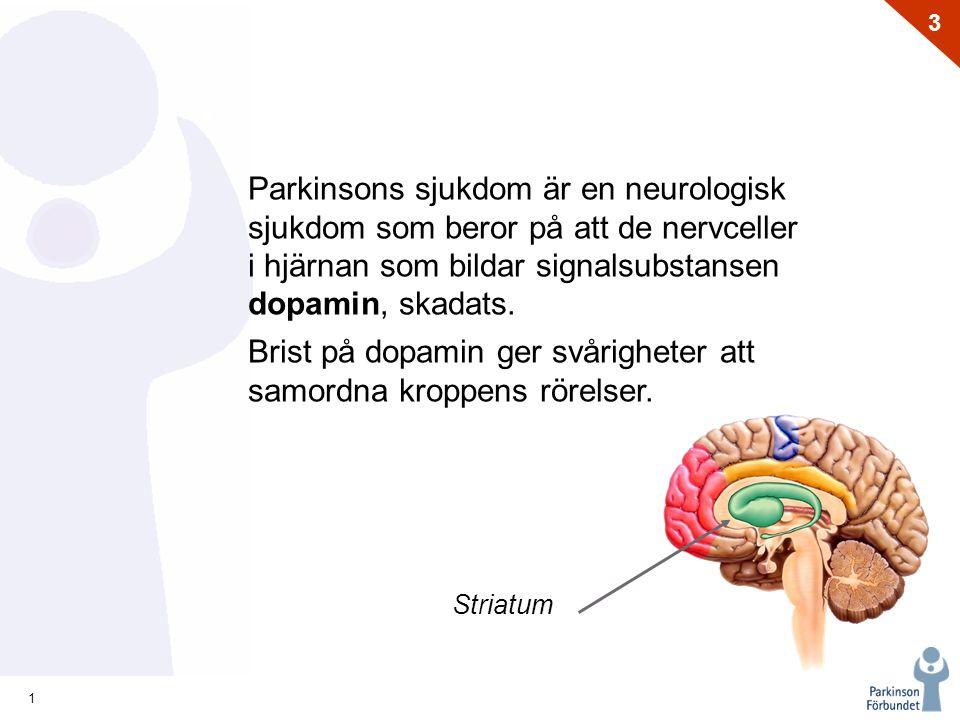 Parkinsons sjukdom är en neurologisk