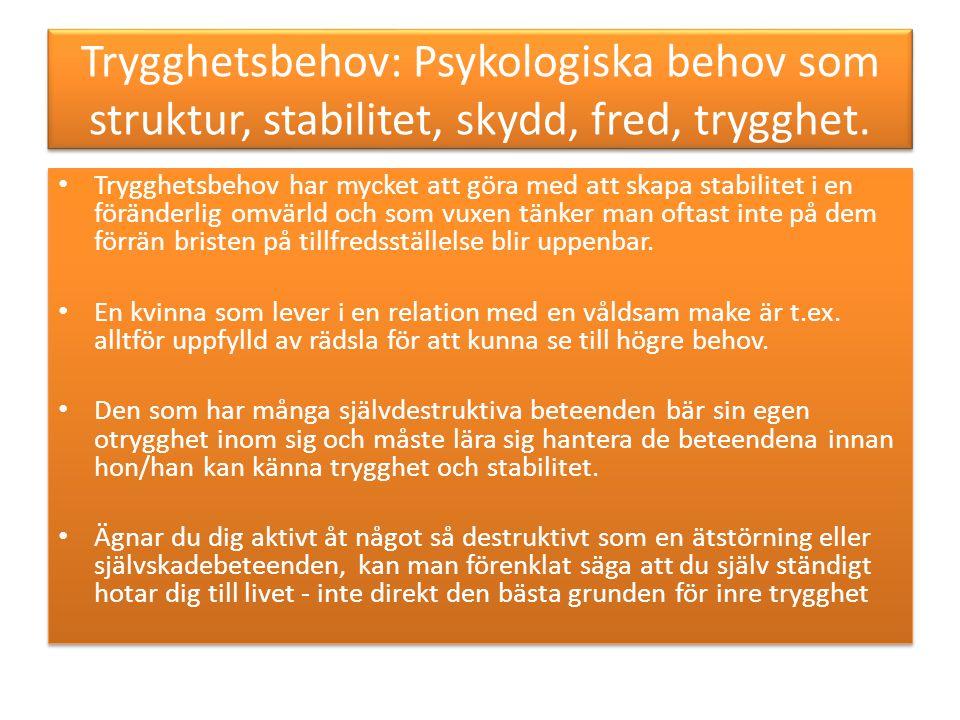 Trygghetsbehov: Psykologiska behov som struktur, stabilitet, skydd, fred, trygghet.