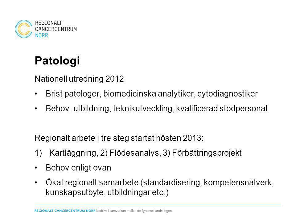 Patologi Nationell utredning 2012