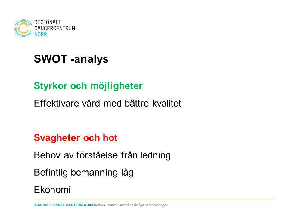 SWOT -analys