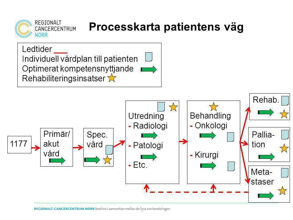 Processkarta patientens väg