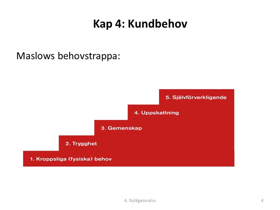 Kap 4: Kundbehov Maslows behovstrappa: 4. Nulägesanalys