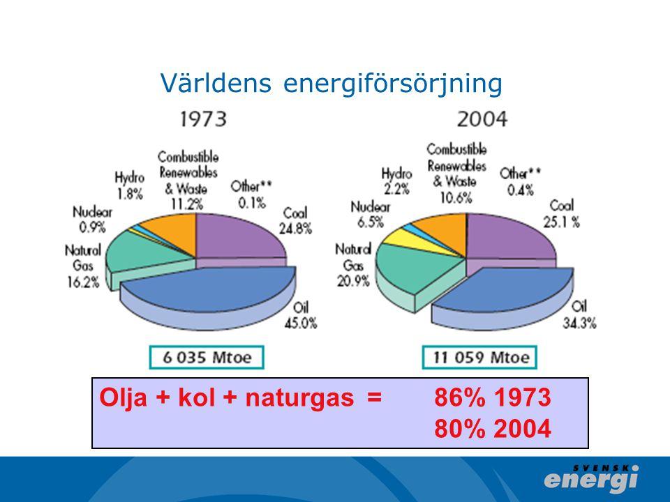 Världens energiförsörjning