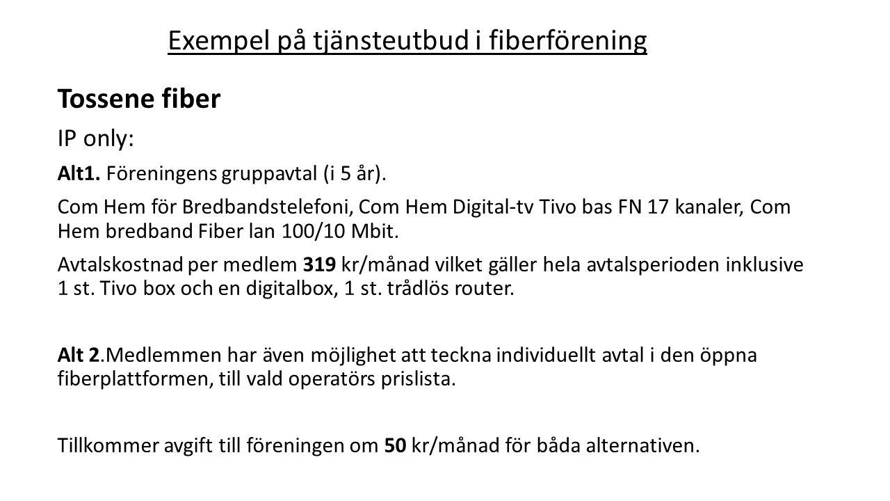 Exempel på tjänsteutbud i fiberförening