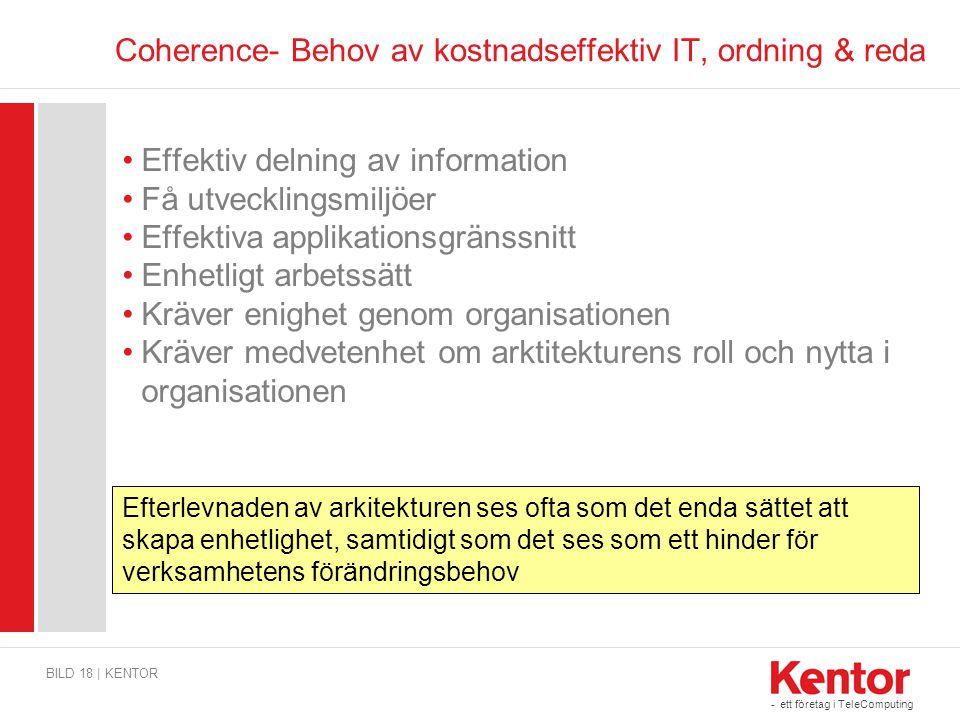 Coherence- Behov av kostnadseffektiv IT, ordning & reda