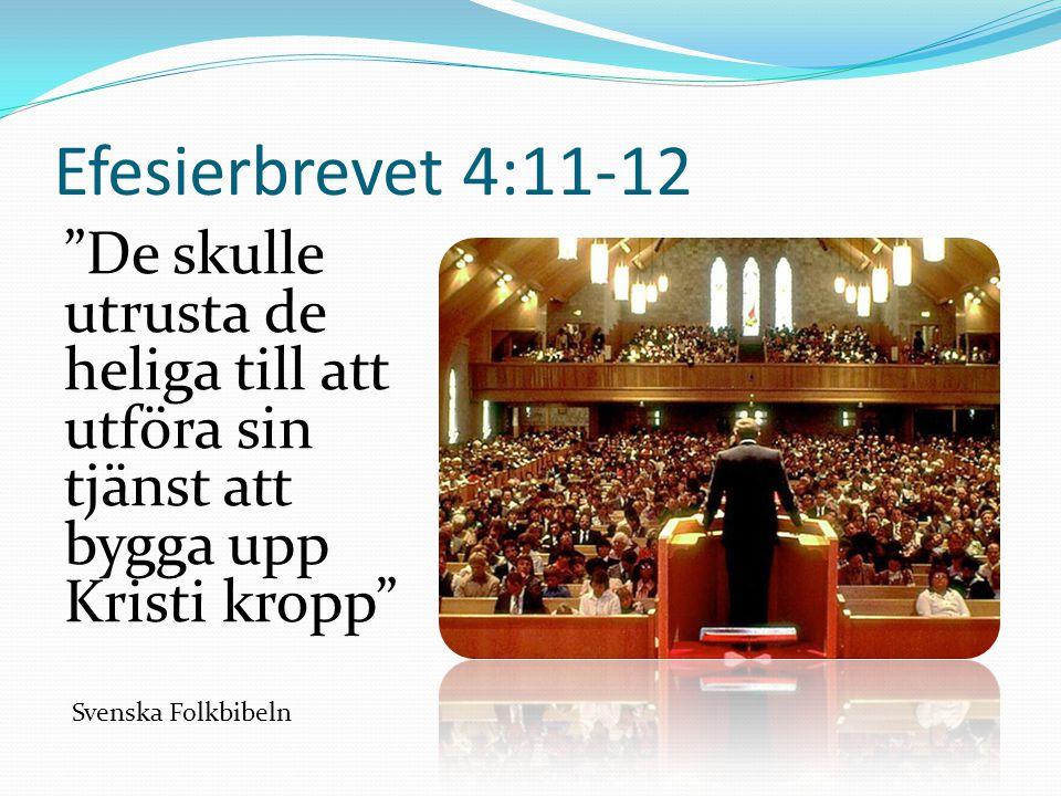 Efesierbrevet 4:11-12 De skulle utrusta de heliga till att utföra sin tjänst att bygga upp Kristi kropp