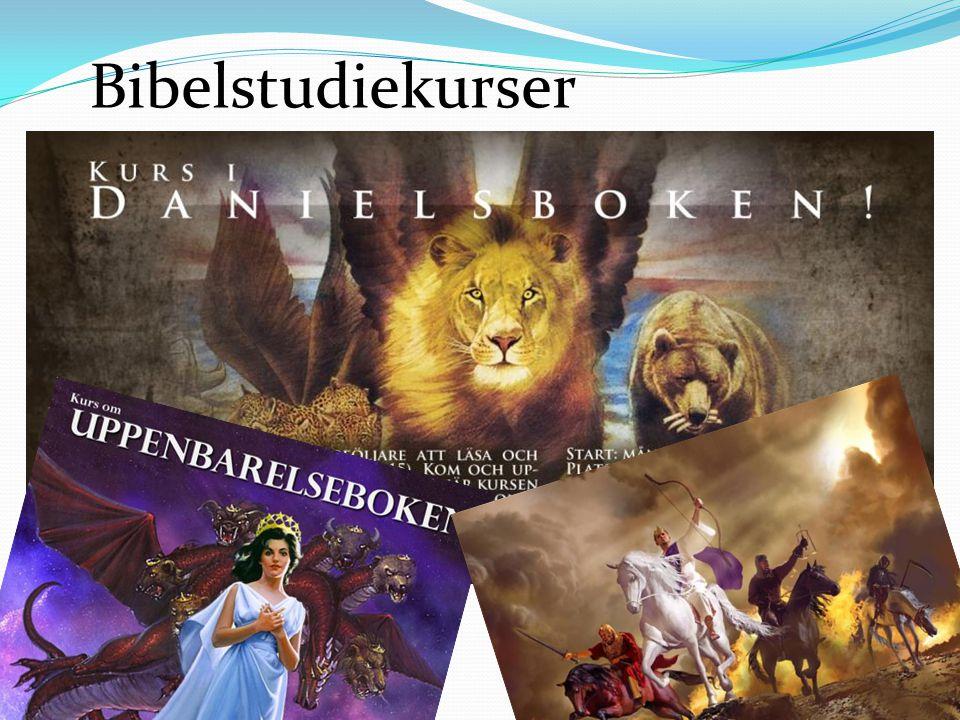 Bibelstudiekurser