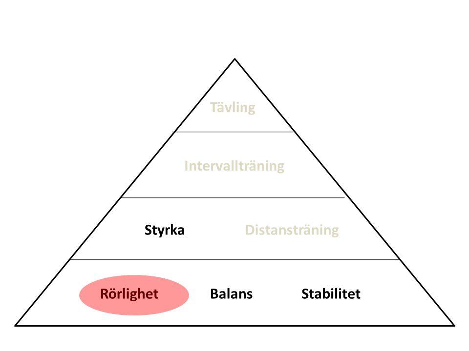 Tävling Intervallträning Styrka Distansträning Rörlighet Balans Stabilitet