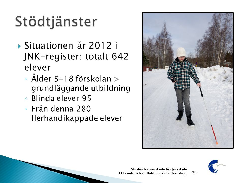Stödtjänster Situationen år 2012 i JNK-register: totalt 642 elever