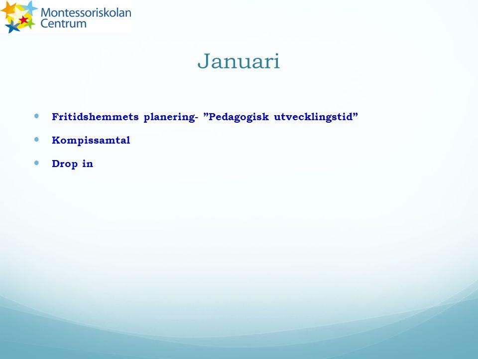 Januari Fritidshemmets planering- Pedagogisk utvecklingstid