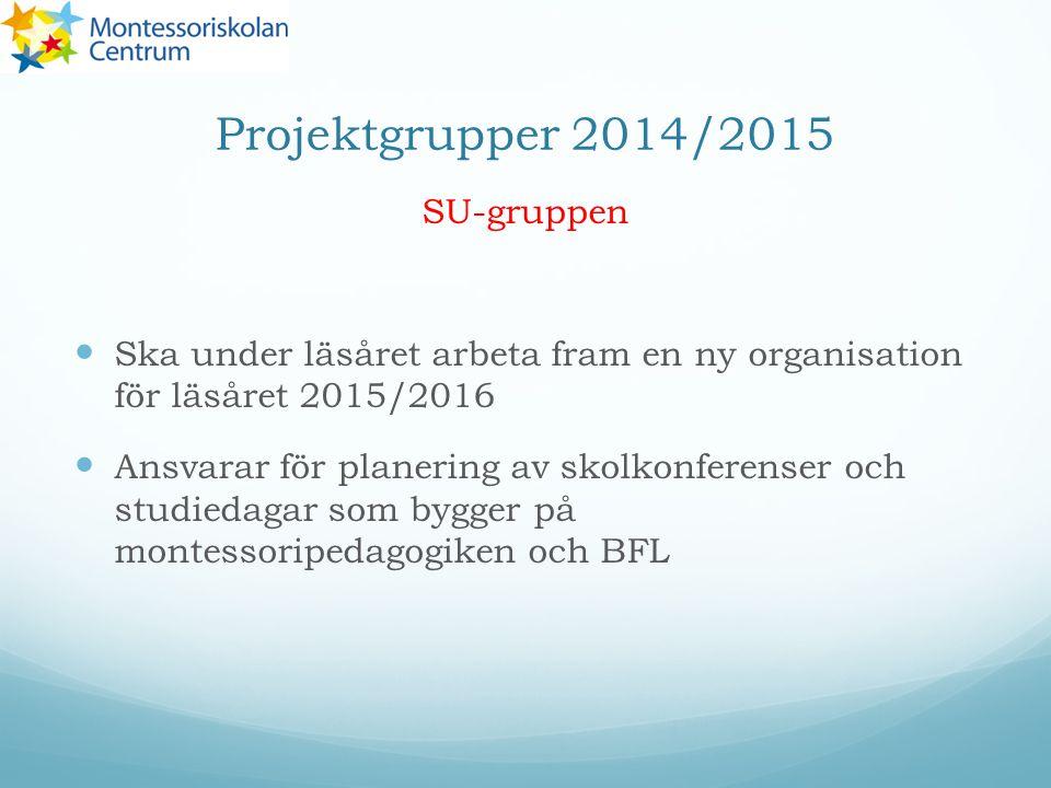 Projektgrupper 2014/2015 SU-gruppen