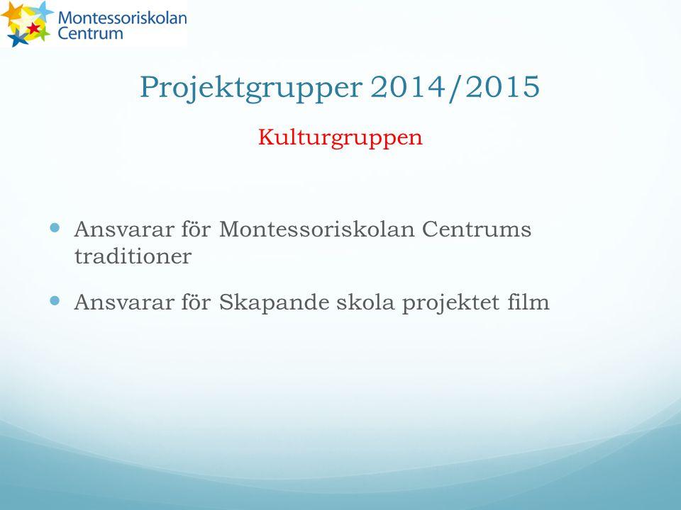 Projektgrupper 2014/2015 Kulturgruppen