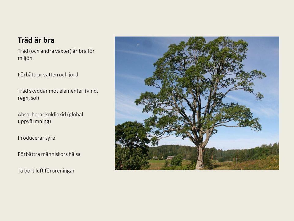 Träd är bra Träd (och andra växter) är bra för miljön