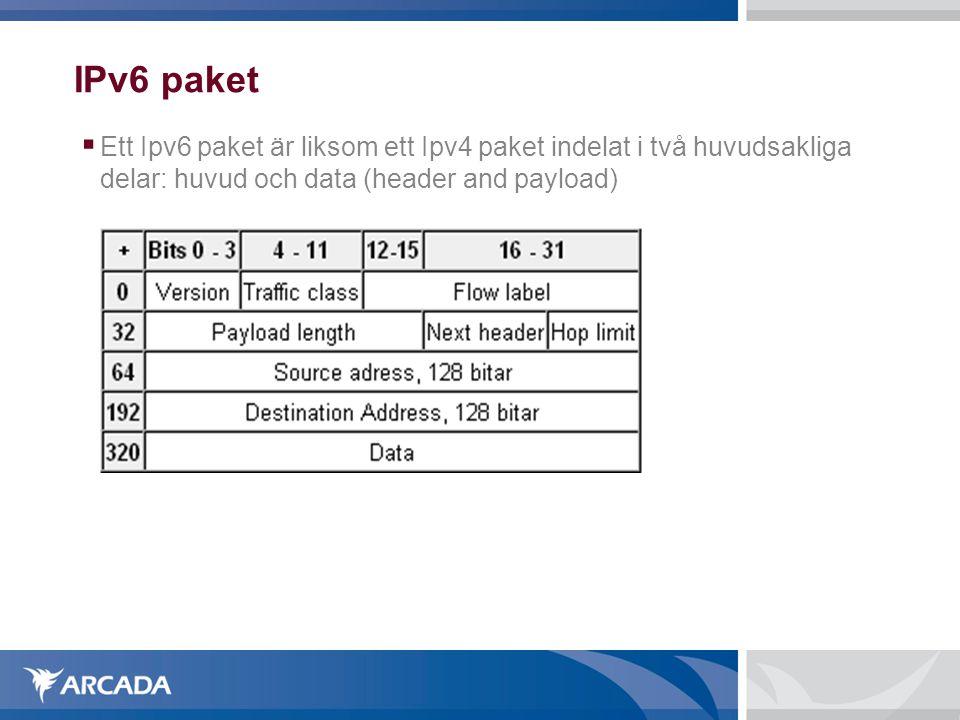 IPv6 paket Ett Ipv6 paket är liksom ett Ipv4 paket indelat i två huvudsakliga delar: huvud och data (header and payload)