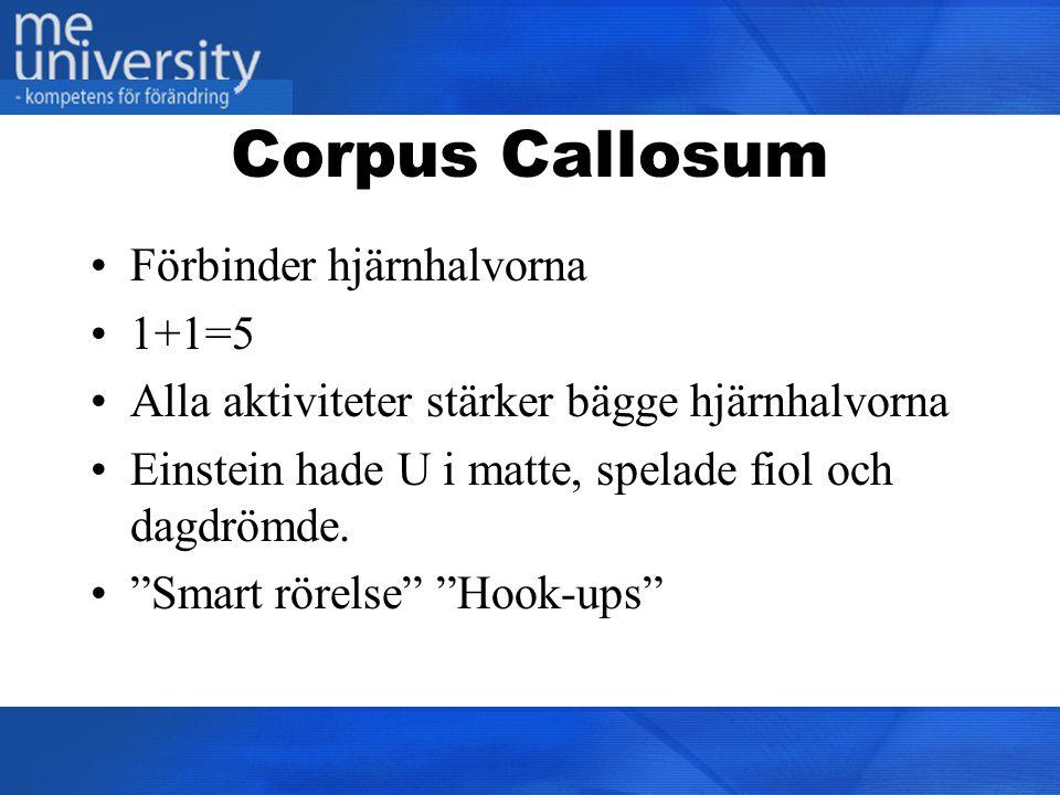 Corpus Callosum Förbinder hjärnhalvorna 1+1=5
