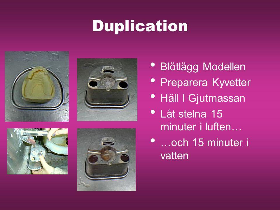 Duplication Blötlägg Modellen Preparera Kyvetter Häll I Gjutmassan