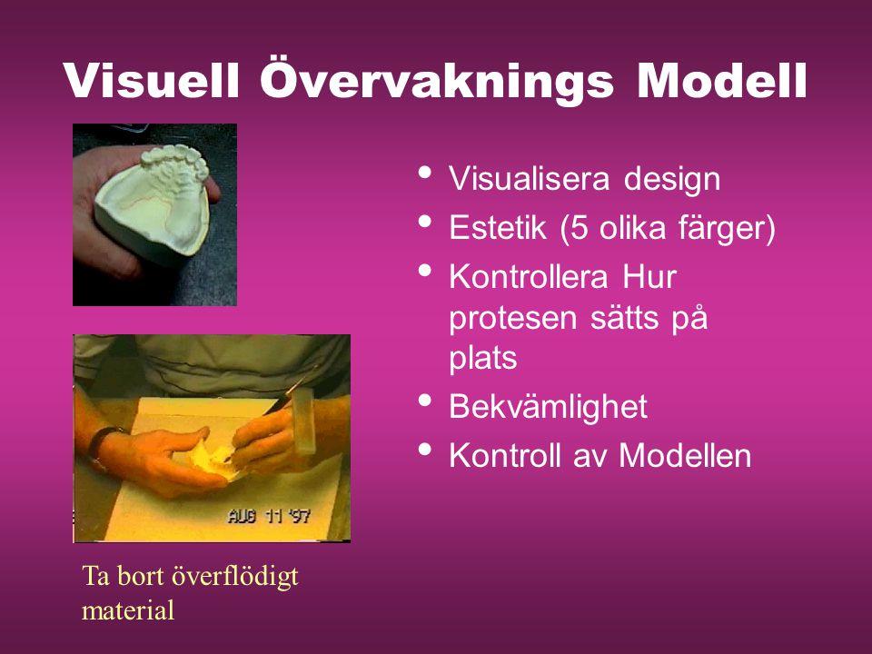 Visuell Övervaknings Modell