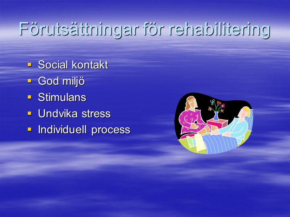 Förutsättningar för rehabilitering