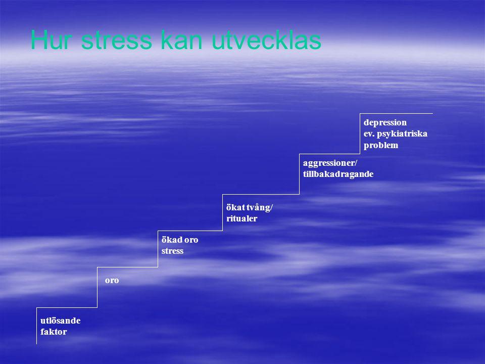 Hur stress kan utvecklas